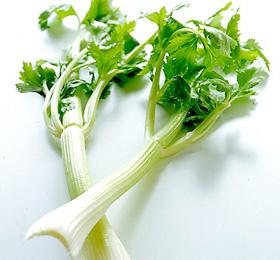 セロリの葉っぱは捨てないで!セロリの葉っぱの美味しい活用方法のサムネイル画像