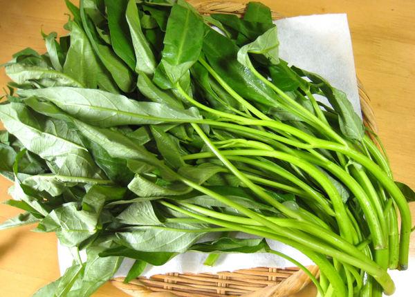 空芯菜って知ってますか?栄養価の高い空芯菜を美味しく食べよう!のサムネイル画像