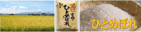 誰もが知っている!?有名なお米ひとめぼれってどんなお米?のサムネイル画像