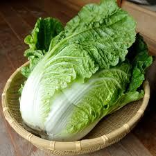 白菜に賞味期限ってあるの?保存方法は常温?冷蔵?それとも冷凍?のサムネイル画像