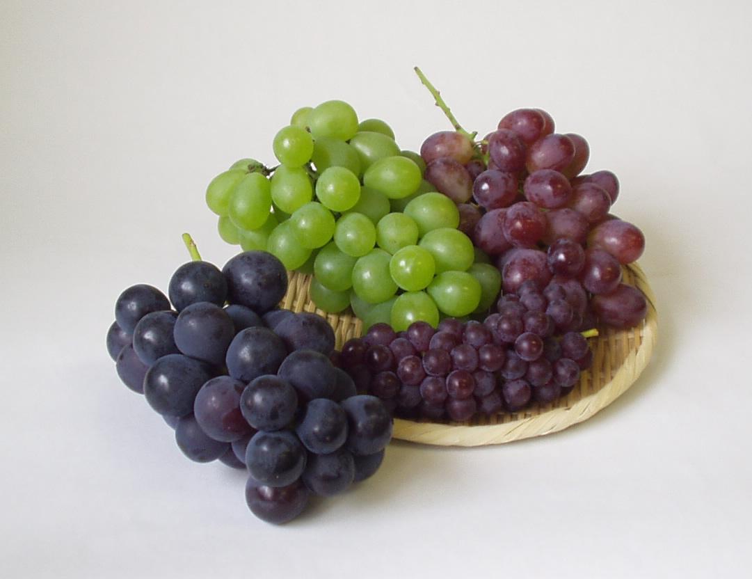 ぶどうアレルギーのメカニズムを知ることで、安心して食べよう!のサムネイル画像
