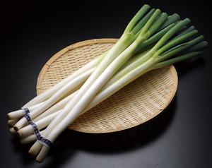 薬味にも料理にも!万能野菜ネギの知られざる嬉しい効果をご紹介♪のサムネイル画像