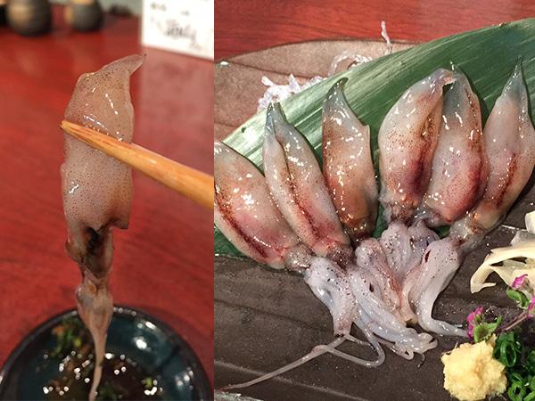 新潟県糸魚川で採れるホタルイカの栄養や食べる時の注意まとめのサムネイル画像