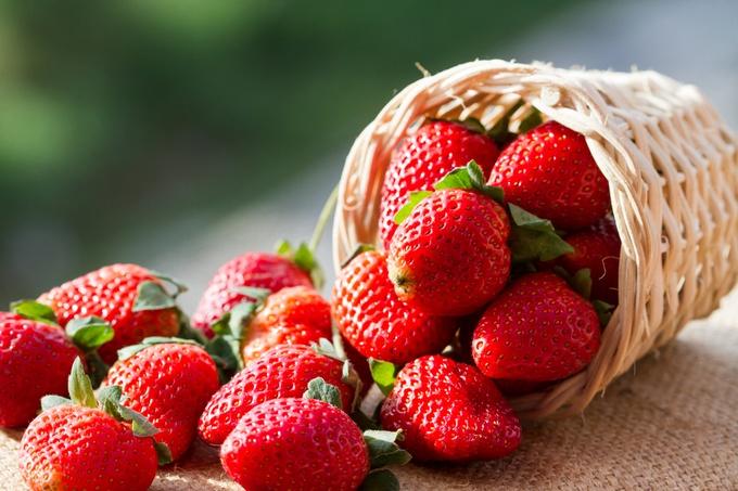 小さな赤い実ががとってもキュート!ビタミンたっぷりいちごの種類のサムネイル画像