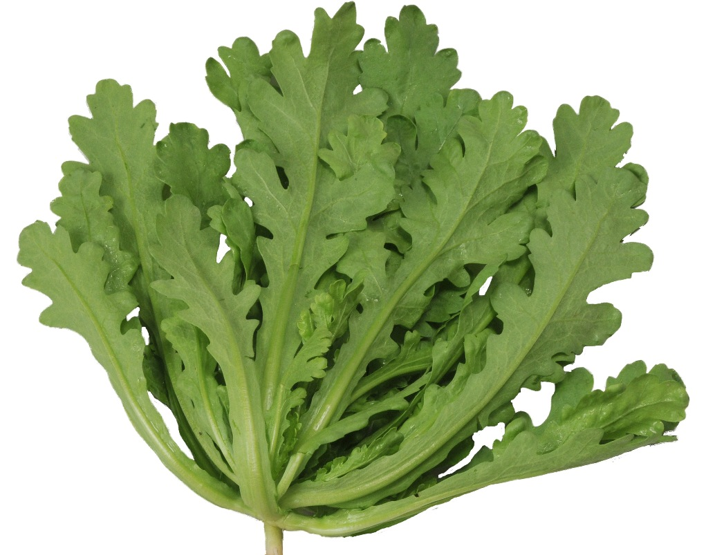 冷凍保存で、お弁当や常備菜に♪春菊の冷凍保存活用のススメのサムネイル画像