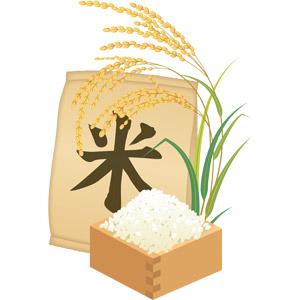お米の栄養は頭脳・体に必要な栄養がたっぷり*ご飯で元気な毎日を!のサムネイル画像