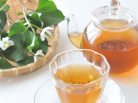 十薬と呼ばれるどくだみ茶の薬効効能で今を乗り切れ!パワーアップ!のサムネイル画像