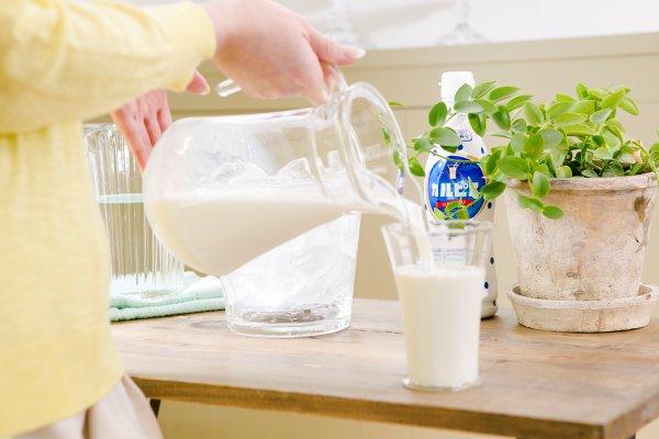 カルピスを牛乳で割る!?不思議なようで美味しいカルピス牛乳!のサムネイル画像