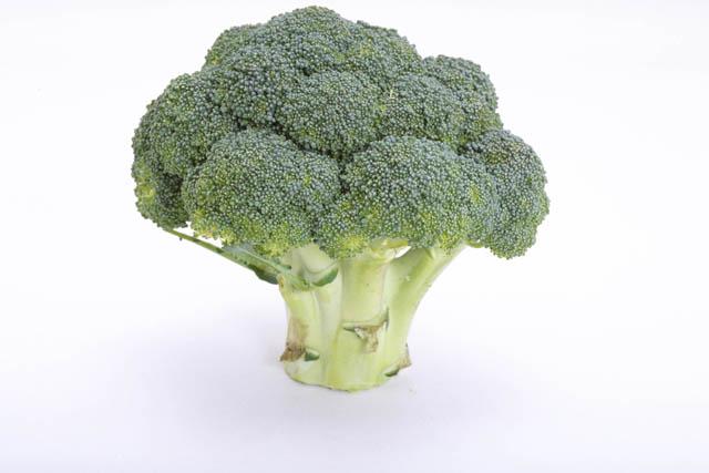 離乳食でブロッコリーっていつから使えるの?レシピと共に紹介しますのサムネイル画像