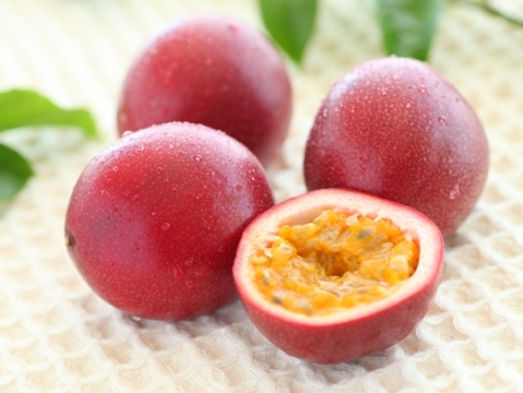 種まで美味しい?パッションフルーツの美味しい食べ方紹介しますのサムネイル画像