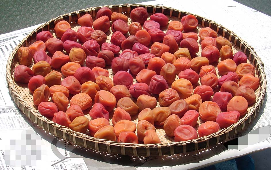 梅干し好き必見!美味しい自家製の梅干しの作り方を教えちゃいます♪のサムネイル画像