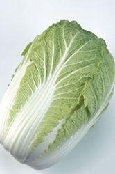 白菜の保存が!新鮮白菜の保存方法とは?いったいどんな保存方法?のサムネイル画像