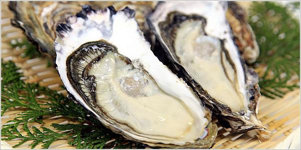 たくさんあっても大丈夫!牡蠣を上手に保存して美味しく食べよう!のサムネイル画像
