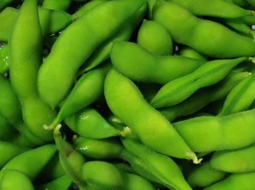 旬の枝豆を上手に保存して美味しく食べる 上手な保存方法教えます!のサムネイル画像