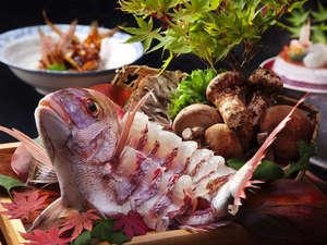 お祝いの席には欠かせない高級魚!鯛についてその旬や生態を調べようのサムネイル画像