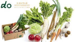 野菜の美味しさを再発見!とってもお得な宅配野菜サービスとは?のサムネイル画像