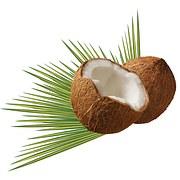 話題のココナッツオイル!ココナッツのいろいろな食べ方を紹介!のサムネイル画像