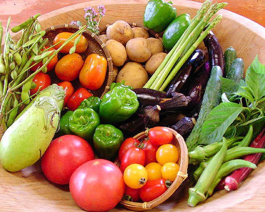 知ってた?!本当に栄養価の高い野菜って?栄養の低い野菜?!のサムネイル画像