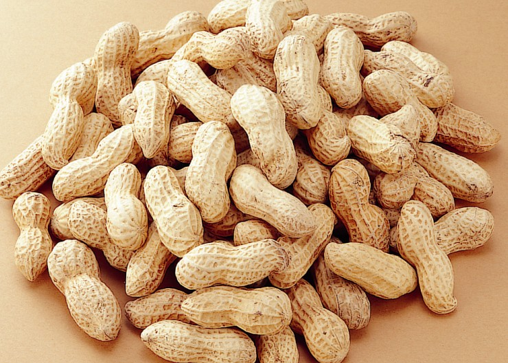 こんな栄養素も?!意外と知らない落花生に含まれたすごい栄養とはのサムネイル画像