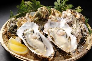 今が旬の時期!牡蠣を美味しく食べるために知っておきたいこと。のサムネイル画像