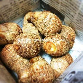 里芋の保存方法を覚えて美味しく食べたい!里芋の正しい保存方法のサムネイル画像