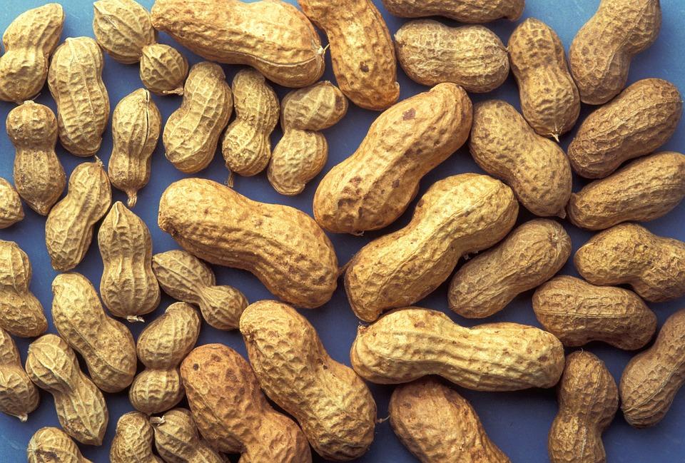 油断できません!ピーナッツのアレルギーの症状をまとめてみましたのサムネイル画像