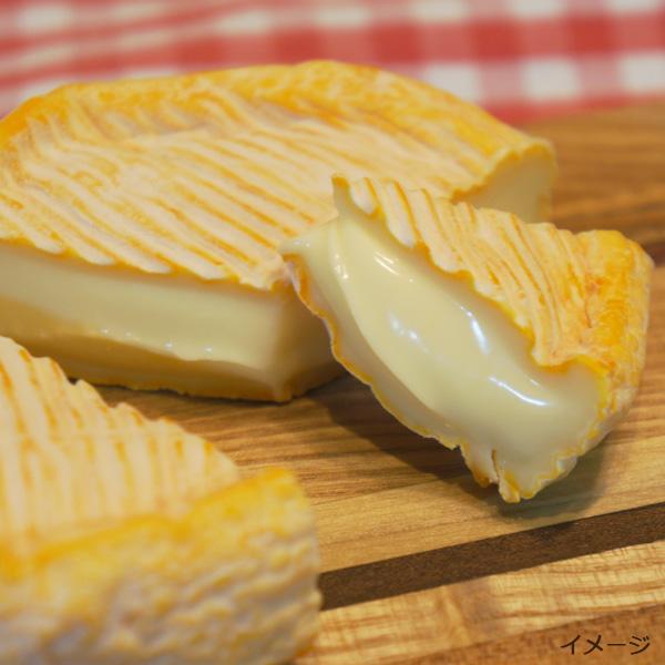 冷蔵庫のチーズは大丈夫!?驚くべき事実!チーズの賞味期限事情。のサムネイル画像