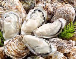 海のミルクと言われる牡蠣!栄養満点の牡蠣のカロリーはどのくらい?のサムネイル画像