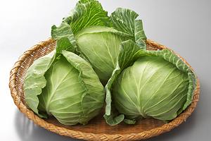 【キャベツの栄養素】キャベツを食べて、より健康的な生活をしようのサムネイル画像
