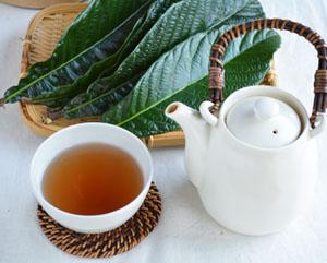 びわの葉茶はどんな味?美味しくて効能たくさん!びわの葉茶のススメのサムネイル画像