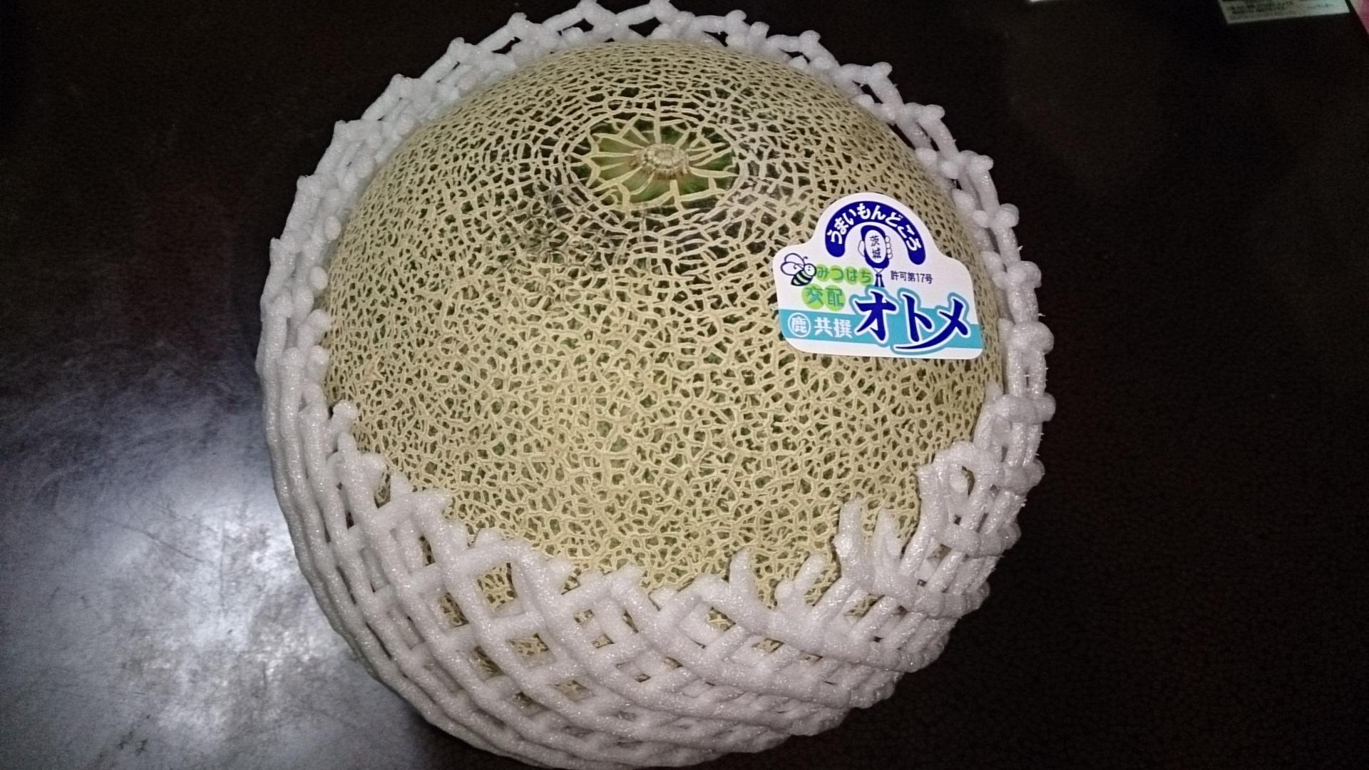 メロン好きの聖地!生産量日本一茨城県鉾田市のメロンの魅力のサムネイル画像