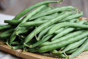 お弁当にもおかずにもよしの万能野菜! いんげんの保存方法のサムネイル画像