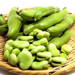 今が旬!そら豆の豊富な栄養と女性に嬉しい効能をご紹介します!のサムネイル画像