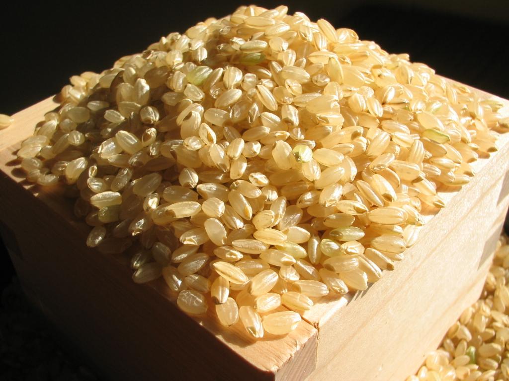明日から玄米が食べたくなる!玄米パワーの効果はすごすぎるのサムネイル画像