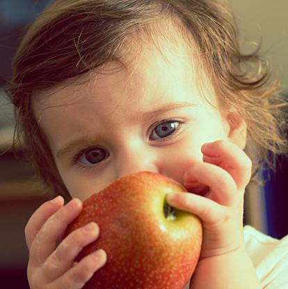 りんごを使って色んな離乳食を作ろう 初期・中期・後期別にご紹介のサムネイル画像