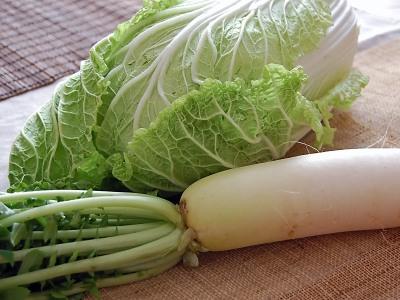 白菜も大根も毎日食卓に上がりますね。日本人の大好物です。のサムネイル画像