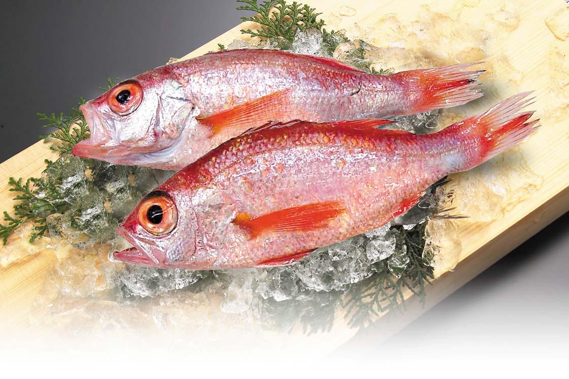 魚はとれたてだけじゃない!最近注目されている魚の熟成とは?のサムネイル画像
