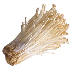 えのきの正しい保存方法とは?長く美味しく食べる方法とは?のサムネイル画像