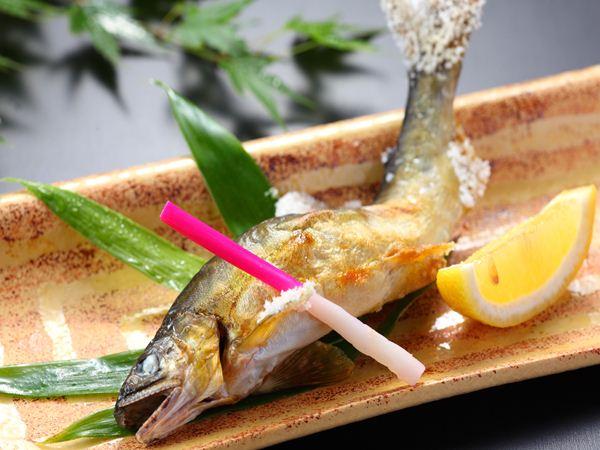 鮎の塩焼きの美味しさは格別ですね!今回は鮎情報を発信です♪のサムネイル画像