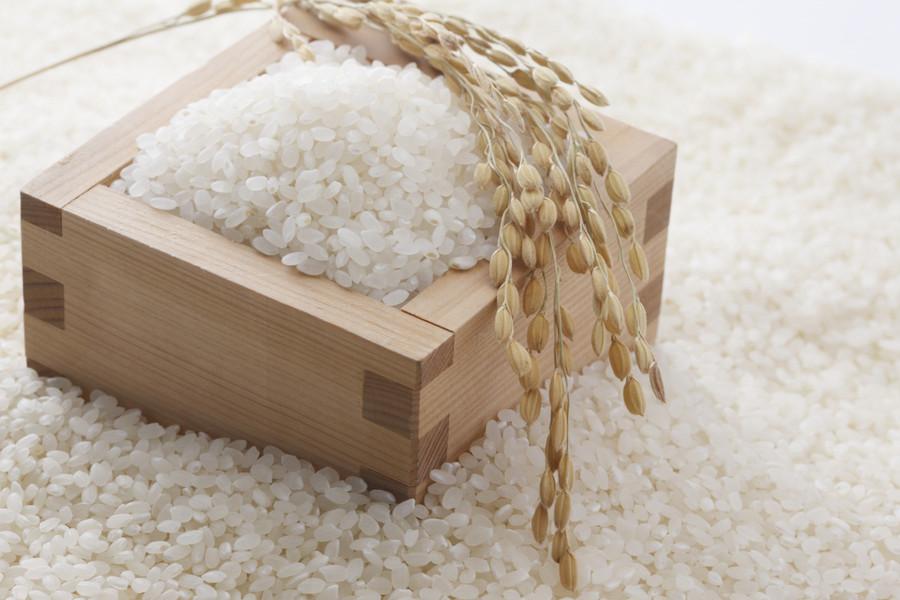 米の保存どうしていますか?お米の正しい保存方法を紹介します!のサムネイル画像