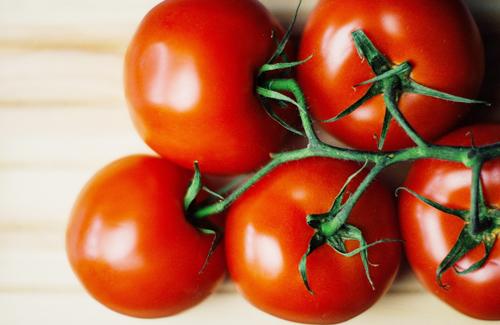 トマトの上手な保存方法!その後の加工に合わせた保存のすすめのサムネイル画像