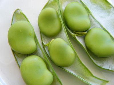 栄養豊富で健康効果が高いそら豆!そら豆の正しい保存法を知ろう!のサムネイル画像