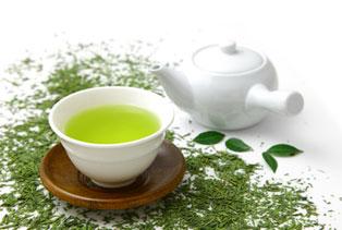 緑茶ダイエットのやり方とその効果を徹底検証!緑茶ダイエットの秘訣のサムネイル画像
