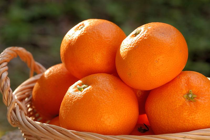 必見!みかんをおいしく保存して夏の気軽な健康食にしよう!のサムネイル画像