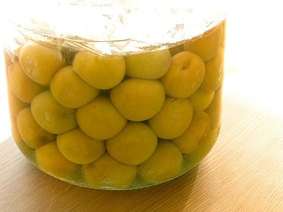 梅酢っておいしい!使い方いろいろ 簡単!おいしい梅酢の作り方のサムネイル画像