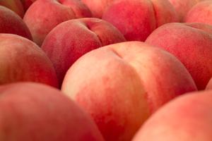 みずみずしくってピチピチピーチ!桃をおいしく保存しましょう☆のサムネイル画像